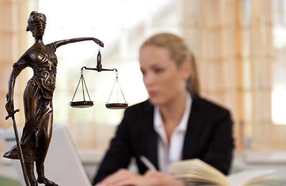 avocat en droit rural et vitivinicole à Paris 8