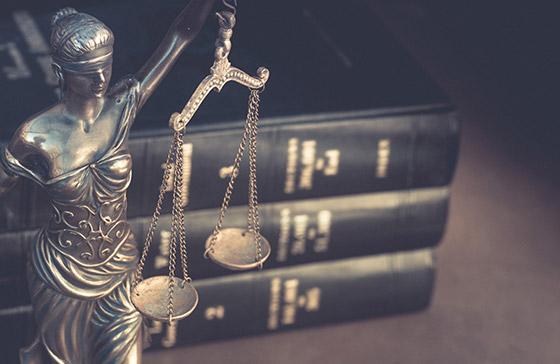 Les honoraires de votre avocate